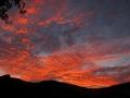 15-Te Henga sunset