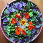 solstice salad