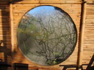 Snail art on deck window-from inside