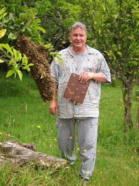 Bee-man Peter with our biggest spring swarm so far..